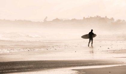Lesetipps / Surfen